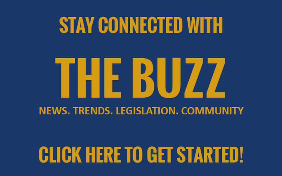 Access The Buzz